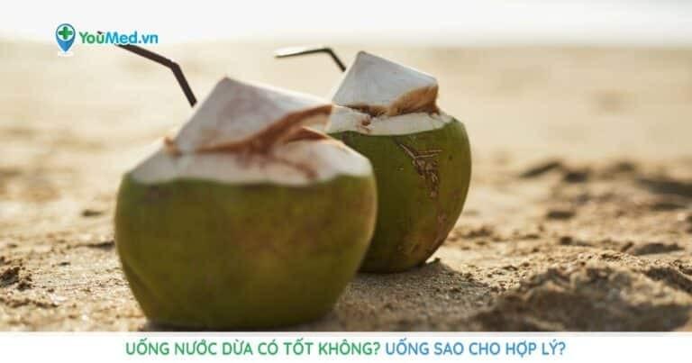 Uống nước dừa có tốt không? Uống sao cho hợp lý?