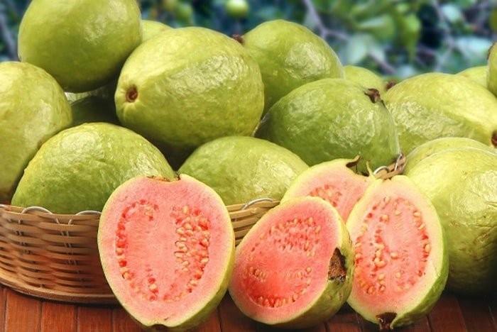 Ổi chứa nhiều thành phần dinh dưỡng tốt cho sức khỏe