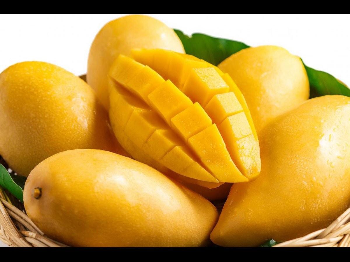 Xoài là một loại trái cây phổ biến trên thế giới