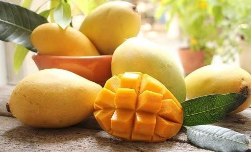 Xoài là loại trái cây có nhiều dinh dưỡng