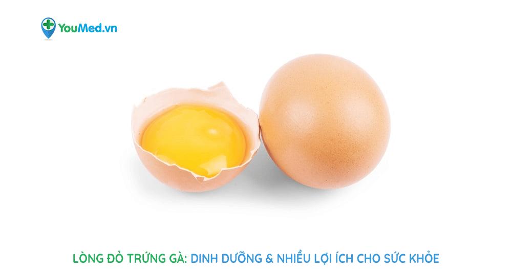 Lòng đỏ trứng gà: Dinh dưỡng và lợi ích sức khỏe