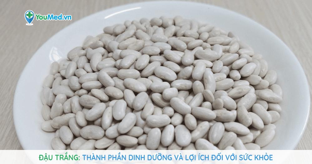 Đậu trắng: Thành phần dinh dưỡng và lợi ích đối với sức khỏe