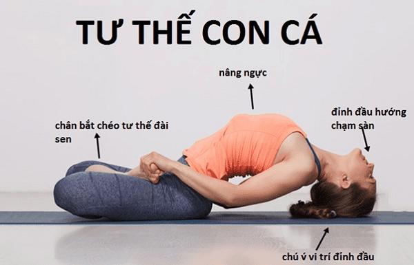 Tư thế con cá trong Yoga