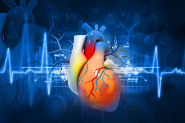 Viêm ngoài màng tim là tình trạng viêm khu vực ngoài màng tim