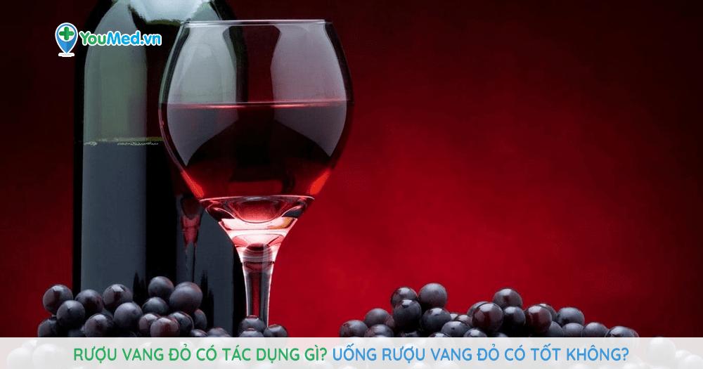 Rượu vang đỏ có tác dụng gì? Uống rượu vang đỏ có tốt không?