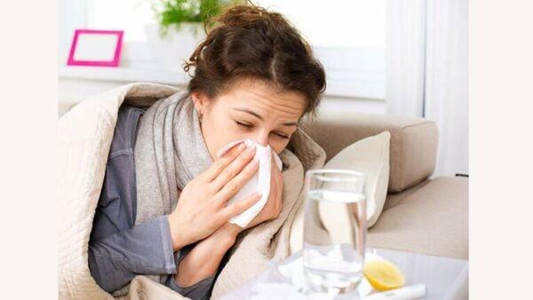 Ngưu bàng tử trị cảm cúm, sổ mũi rất hiệu quả.