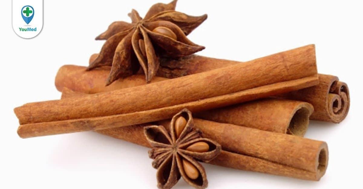Cây quế: thảo dược cho những vị thuốc thơm nồng