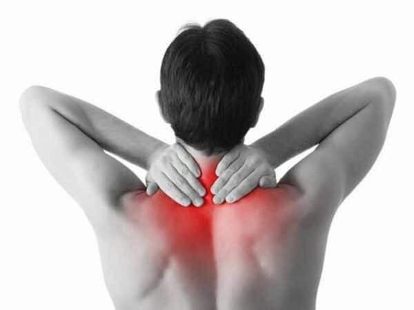 Mã tiền có thể giảm đau nhức xương khớp, mạnh gân cốt...