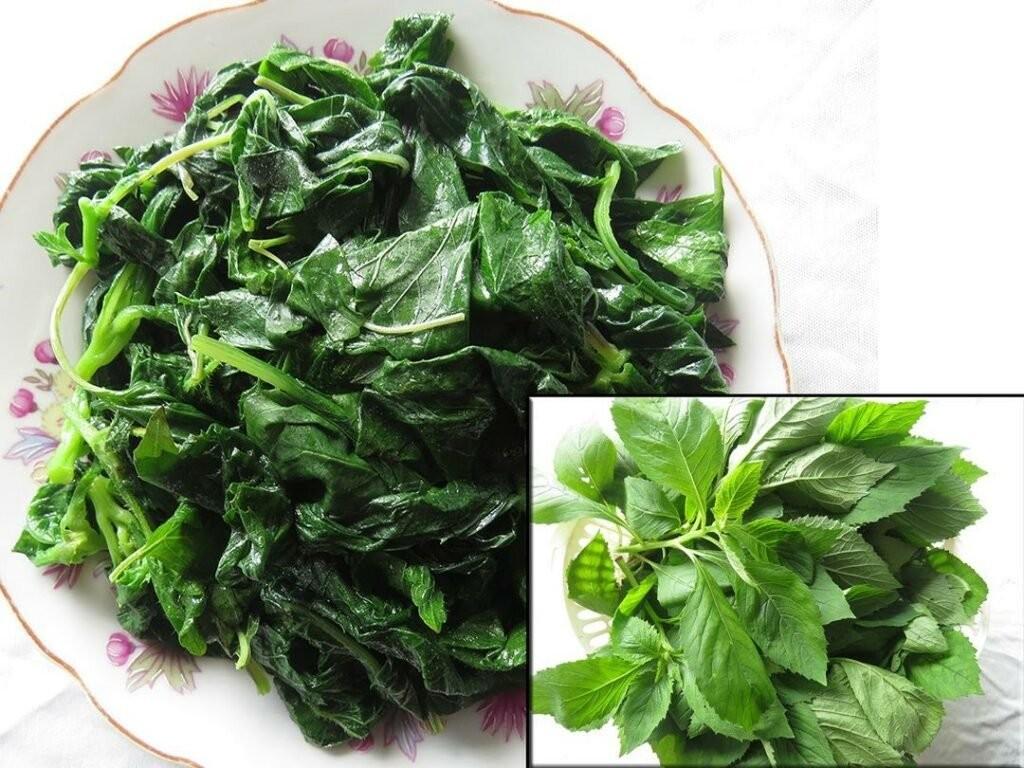 Rau tàu bay luộc là món ăn dân dã ở nông thôn Việt Nam