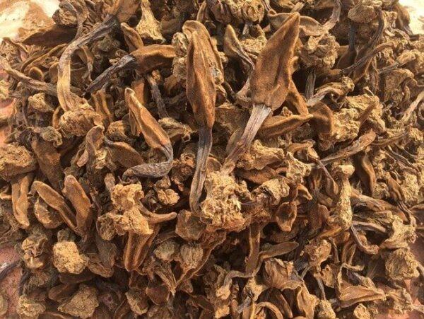 Tỏa dương khô