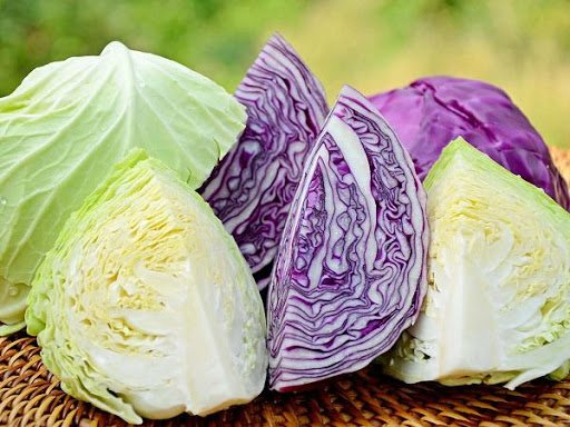 Bắp cải chứa nhiều vitamin và khoáng chất