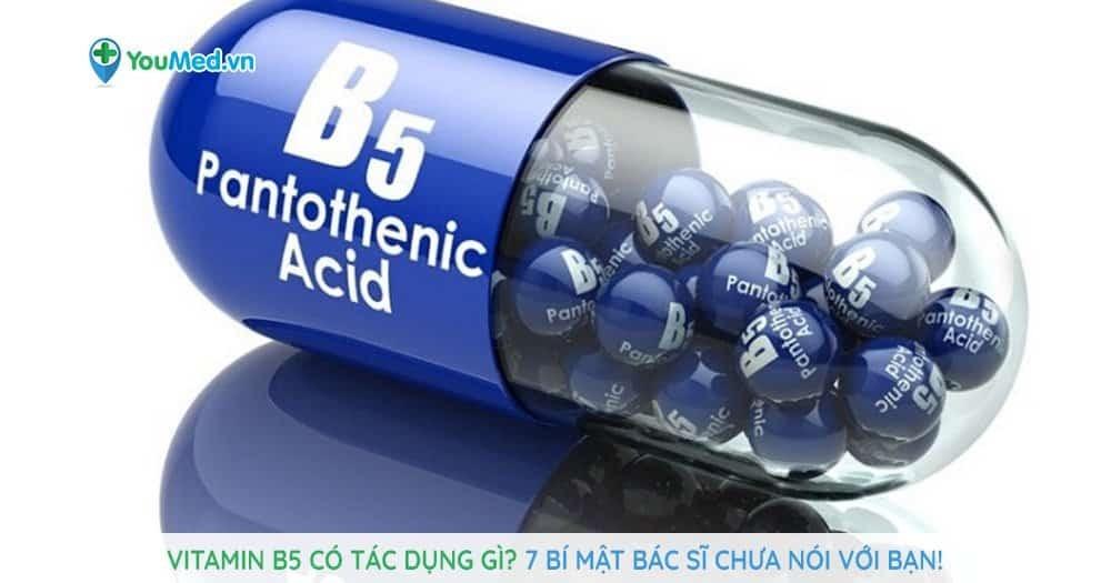 Vitamin B5 có tác dụng gì?