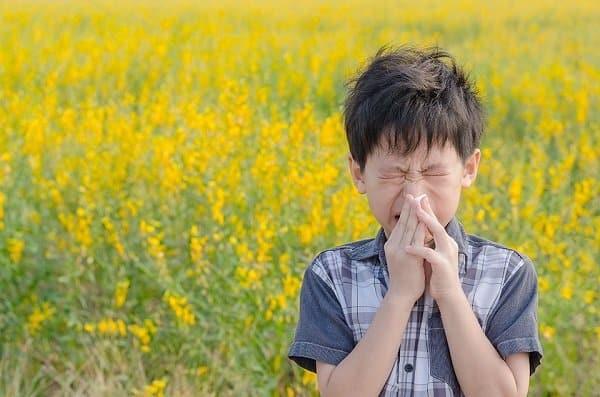Dị ứng phấn hoa có thể là một nguyên nhân gây nổi hạch sau tai