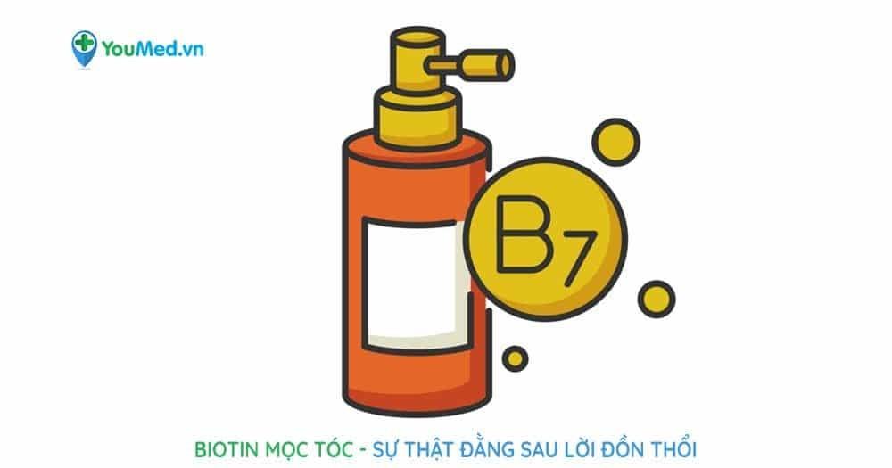 Biotin mọc tóc: sự thật đằng sau lời đồn thổi