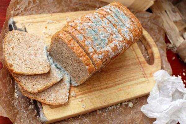 Ăn thức ăn cũ, ôi thiu làm tăng nguy cơ ngộ độc thực phẩm