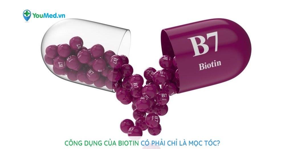 Công dụng của biotin có phải chỉ là mọc tóc?