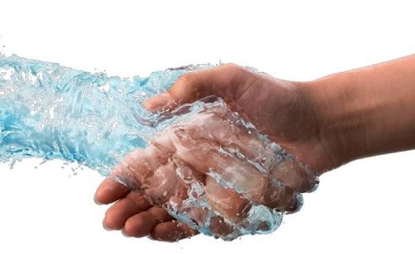 Nước rất cần cho hầu hết các hoạt động sống của cơ thể