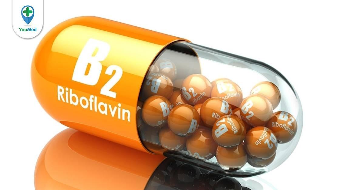 Bạn có biết vitamin b2 có tác dụng gì hay không?