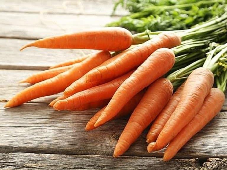 Cà rốt - Tác dụng tẩy giun