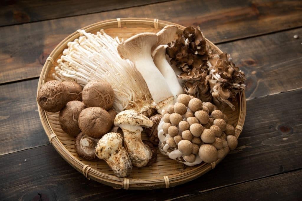 Nấm là nguồn cung cấp vitamin D duy nhất cho người ăn chay