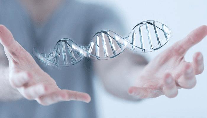 Phì đại tuyến tiền liệt do yếu tố di truyền