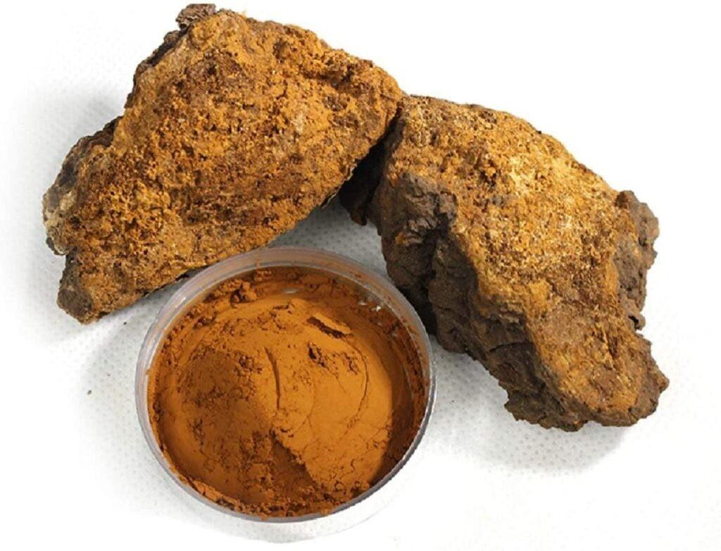 Vỏ ngoài xù xì có màu đen đặc trưng của nấm Chaga