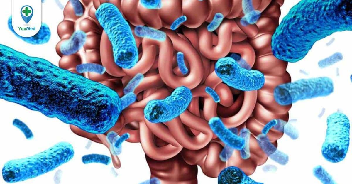 Những điều cần biết về Serotonin - hóa chất tế bào thần kinh sản xuất