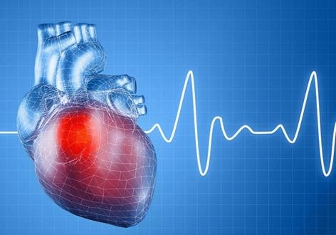 Các thành phần trong ớt chuông giúp kiểm soát nhịp tim và huyết áp ổn định