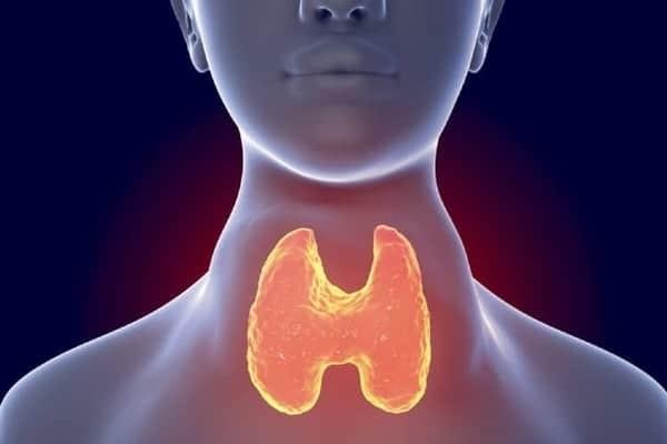 Bệnh Basedow là bệnh lý tuyến giáp phổ biến