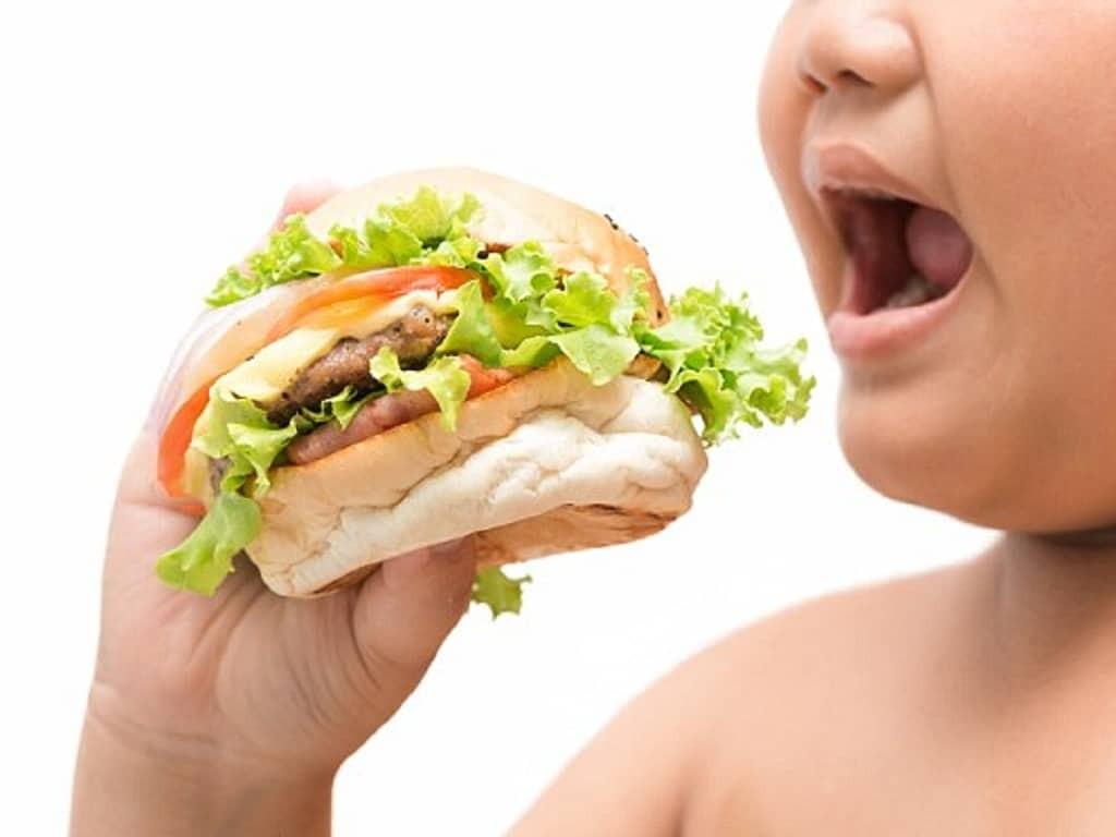 Việc ăn nhiều thức ăn nhanh, chứa nhiều chất béo là nguyên nhân dẫn đến béo phì