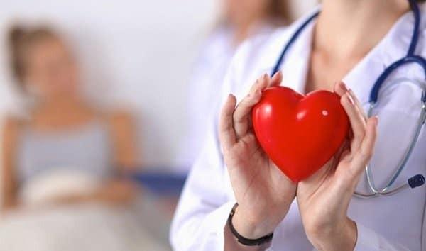 Trái tim là cơ quan quan trọng của cơ thể