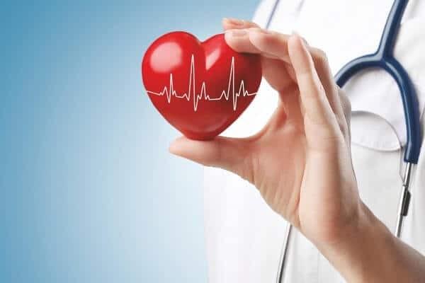 Cà tím là thực phẩm có lợi cho hệ tim mạch.