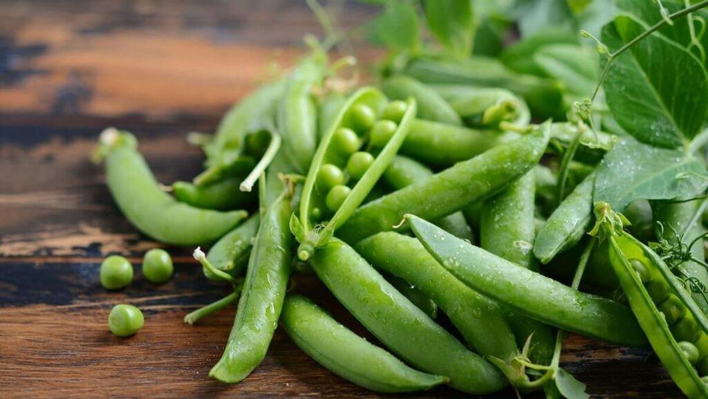 Đậu Hà lan là loại thực phẩm quen thuộc trong các bữa ăn.