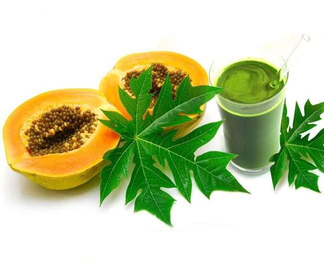 Nước ép là cách đơn giản nhất để thêm lá đu đủ vào chế độ ăn uống