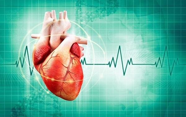 Tìm hiểu nhịp tim bình thường theo độ tuổi