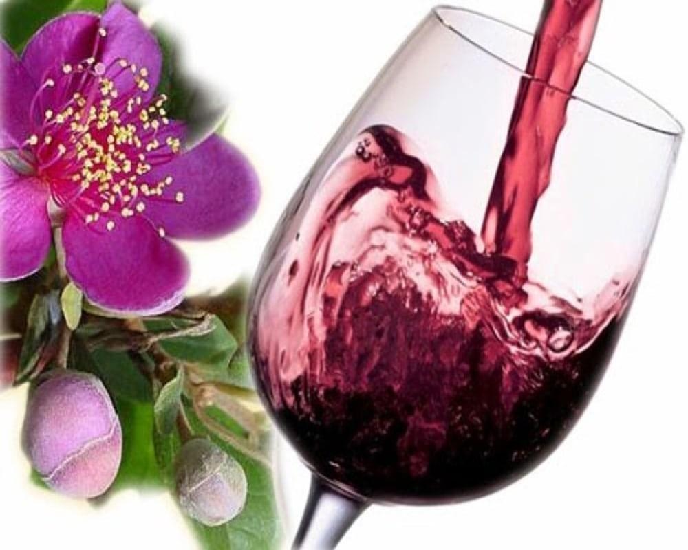 Rượu sim vừa ngon vừa tốt cho sức khỏe