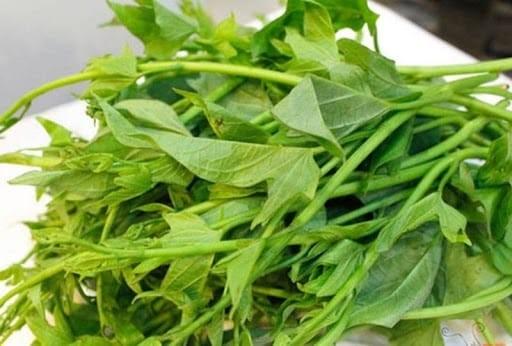 Rau lang là bộ phận thân non và lá của cây khoai lang.