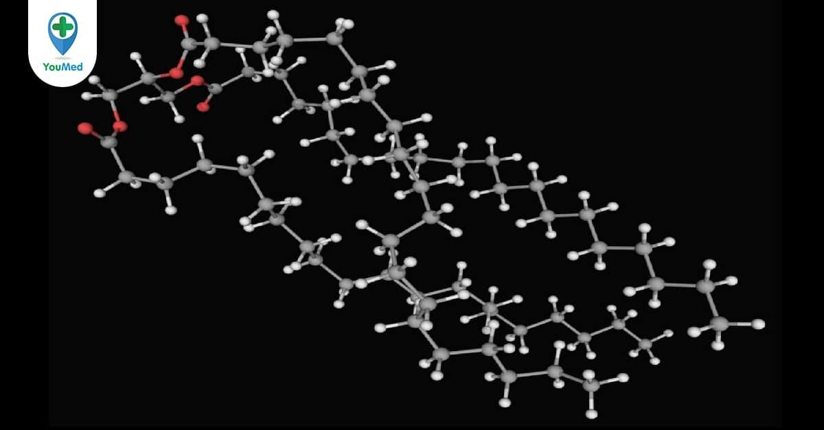 Các bệnh liên quan đến rối loạn chuyển hóa lipid