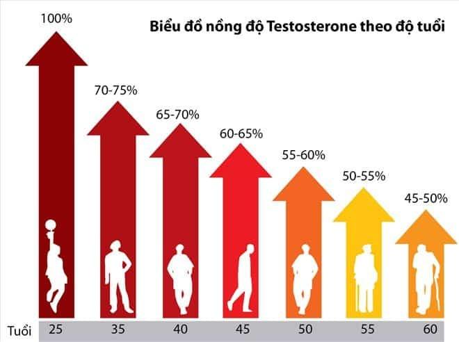 Tuổi tác ảnh hưởng nhiều đến quá trình sản sinh Testosteron ở nam giới